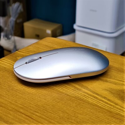 Мышь беспроводная Xiaomi Fashion Mouse Silver (XMWS001TM)